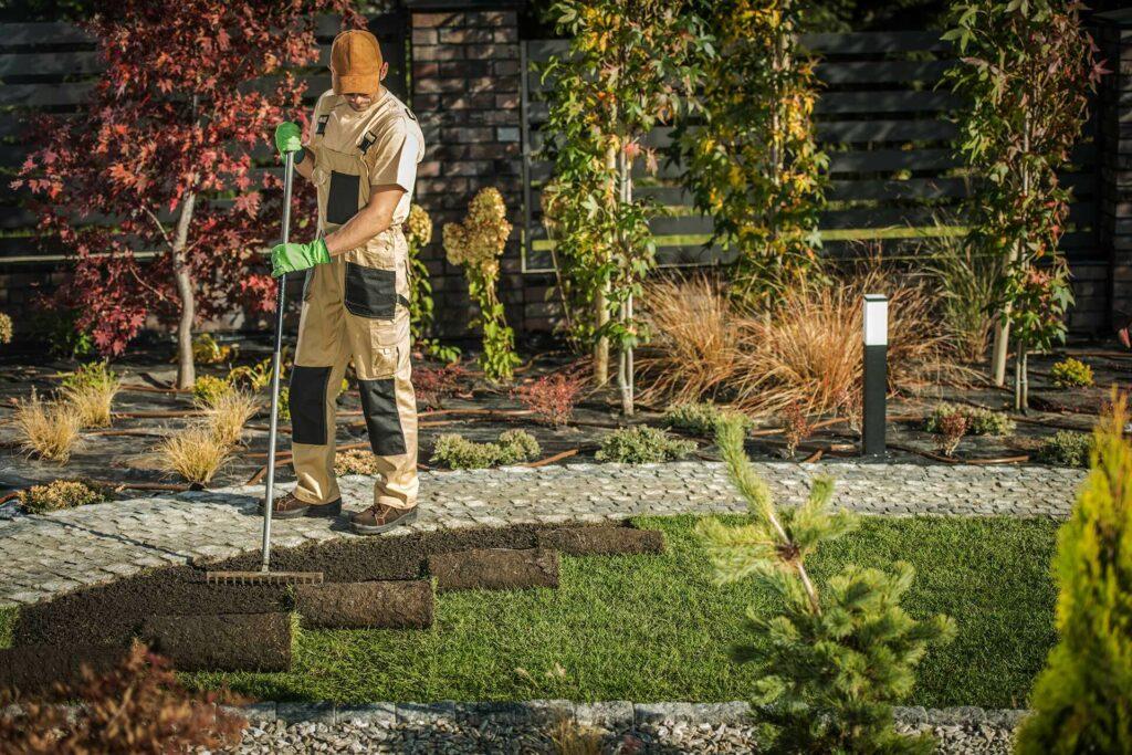 new-garden-grass-turfs-AL3Q8M7.jpg