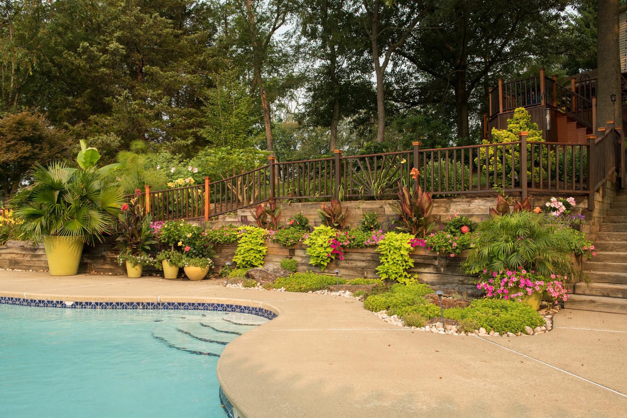 Pool Side Designs