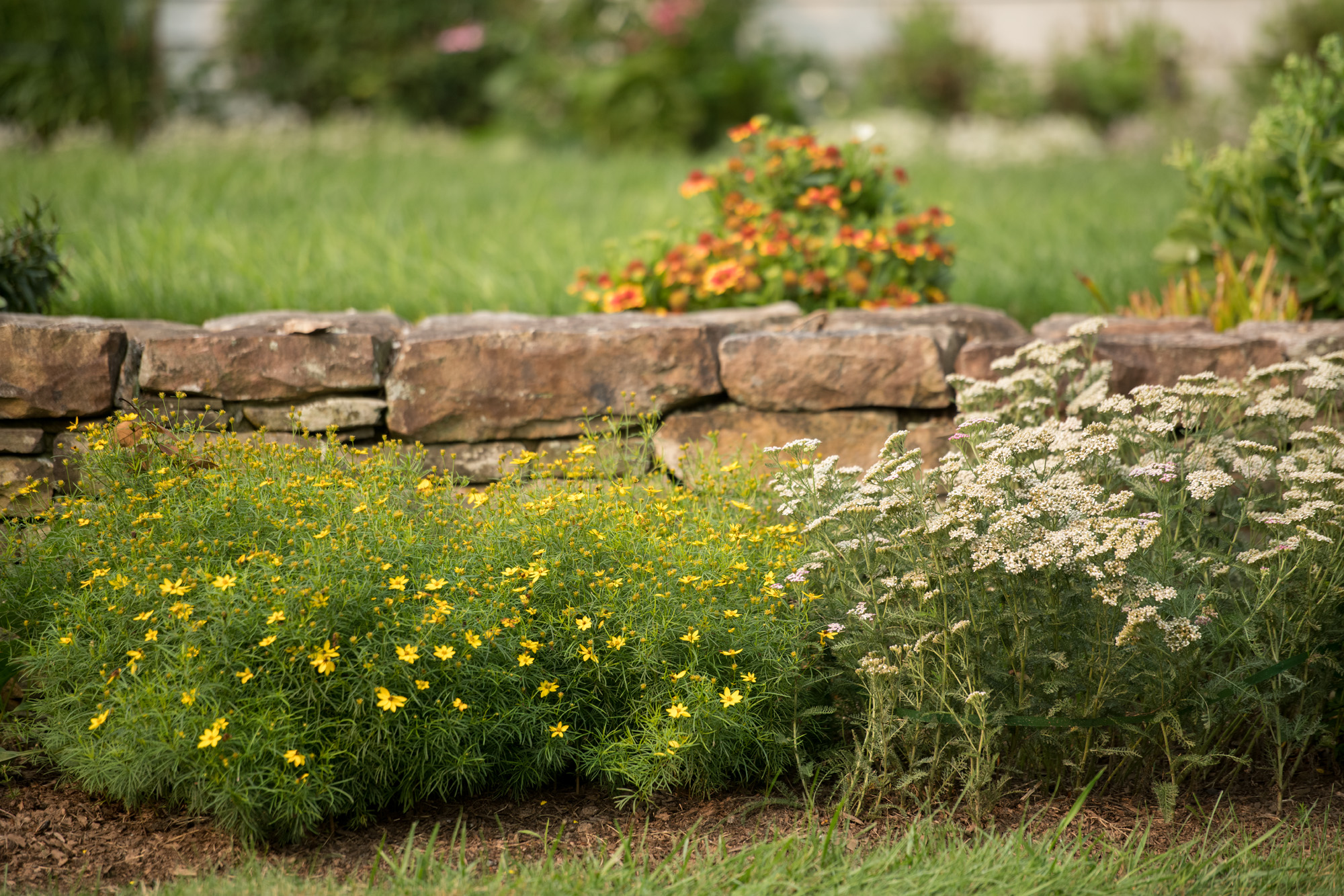 Quaint Gardens